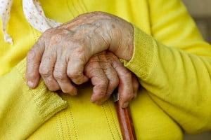 elderly hands holding stick