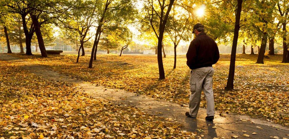 man walking in park - Evidently Cochrane