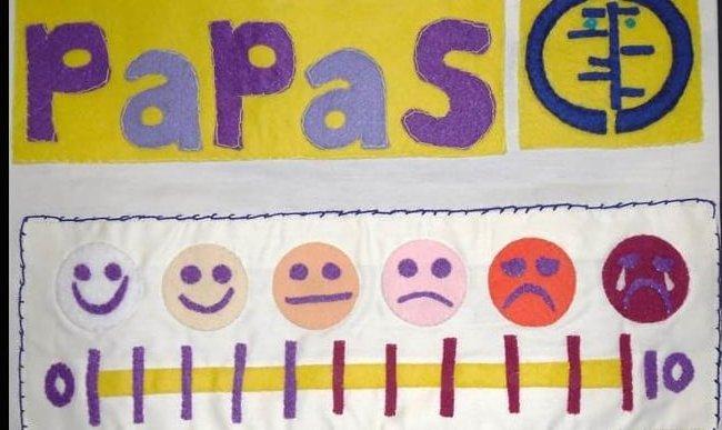 PaPaS Patchwork