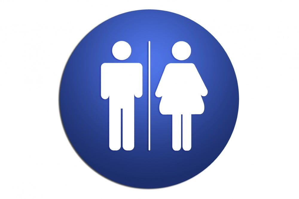 male and female lavatory symbols