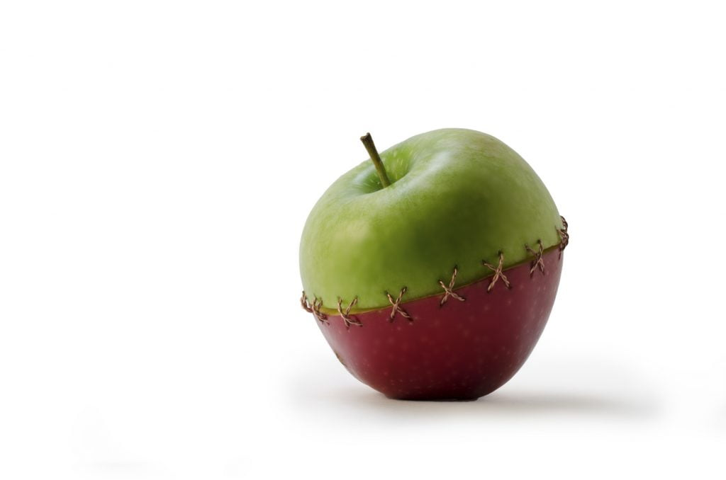 Stock images: a Green Red Stitched Apple