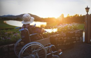 woman in wheelchair watching sunset
