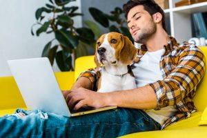 man using laptop with dog on lap