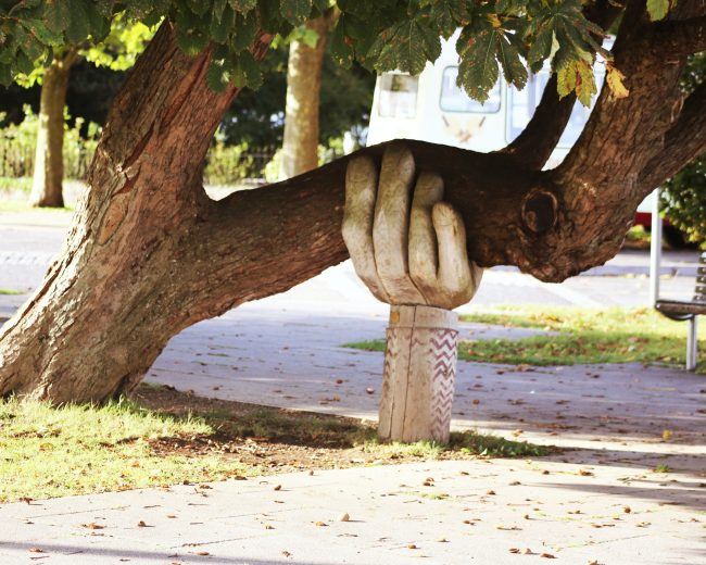 wooden hand holding up a tree