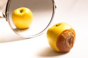 Apple in good condition looking at itself in the mirror while its back is rotten